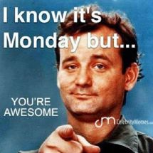 monday meme bill murray